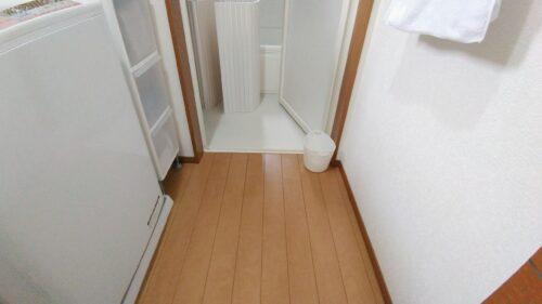 洗面所の床に置いてあるゴミ箱